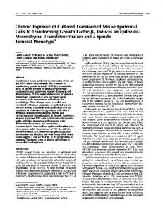 Chronic Exposure of Cultured Transformed Mouse ... - CiteSeerX