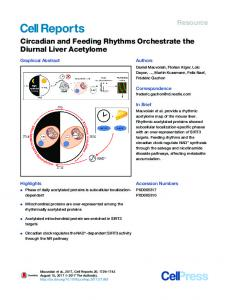 Circadian and Feeding Rhythms Orchestrate the Diurnal ... - Cell Press