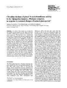 Circadian rhythms of pineal N-acetyltransferase activity ... - Springer Link