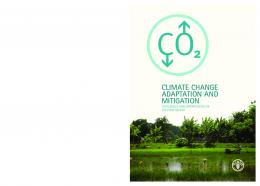 Climate change adaptation and mitigation