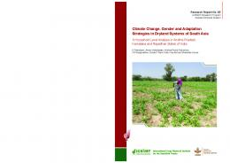 Climate Change, Gender and Adaptation Strategies in