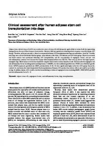 Clinical assessment after human adipose stem cell transplantation into ...