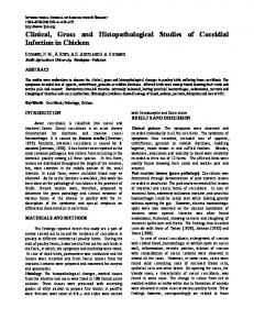 Clinical, Gross and Histopathological Studies of ...