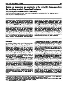 Cloning and biochemical characterization of the cyclophilin ...