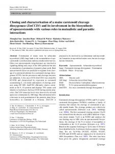 Cloning and characterisation of a maize carotenoid cleavage ... - Core