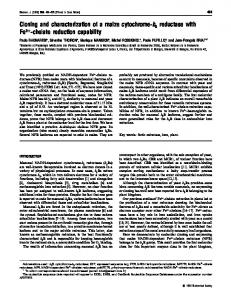 Cloning and characterization of a maize cytochrome-b5 reductase with