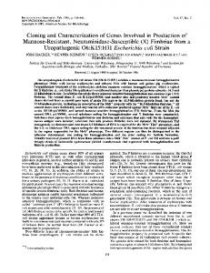 Cloning and Characterization of Genes Involved in Production of ...