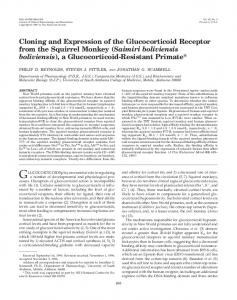 Cloning and Expression of the Glucocorticoid Receptor from the ...