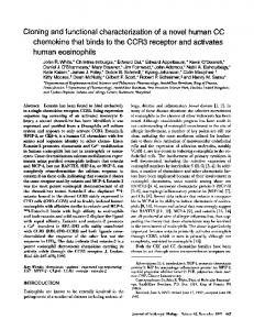 Cloning and functional characterization of a novel human ... - CiteSeerX