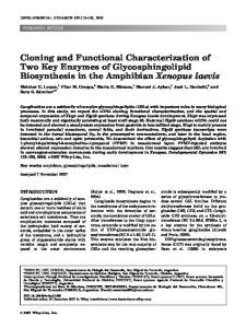 Cloning and functional characterization of two ... - Wiley Online Library