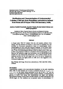 (CMCase) from Penicillium ochrochloron isolated from forest soil of ...