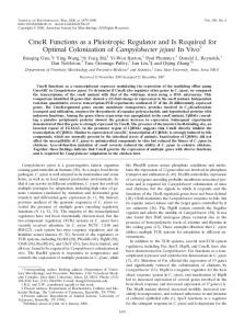 CmeR Functions as a Pleiotropic Regulator and Is Required for ...