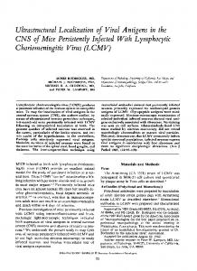 CNS of Mice Persistently Infected With Lymphocytic - Europe PMC