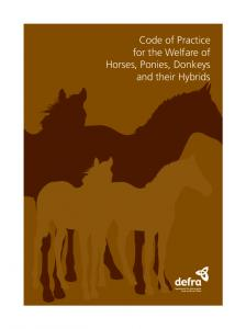 Code of Practice for the Welfare of Horses, Ponies, Donkeys and ...