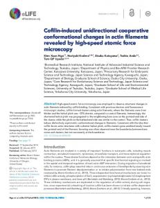 Cofilin-induced unidirectional cooperative conformational changes in ...