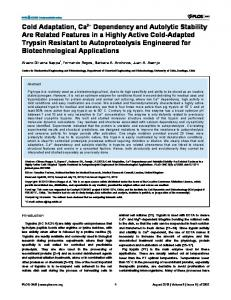 Cold Adaptation, Ca2+ Dependency and Autolytic