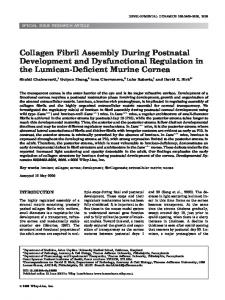Collagen fibril assembly during postnatal ... - Wiley Online Library