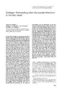 Collagen Remodeling after Myocardial Infarction - Europe PMC