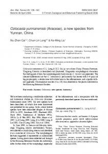 Colocasia yunnanensis (Araceae), a new species from Yunnan, China