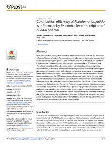 Colonization efficiency of Pseudomonas putida is influenced ... - PLOS