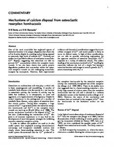 COMMENTARY Mechanisms of calcium disposal from osteoclastic ...