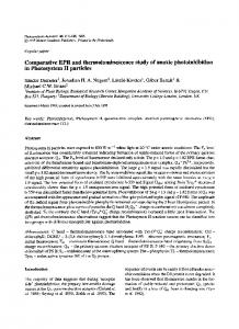 Comparative EPR and thermoluminescence study of ... - Springer Link