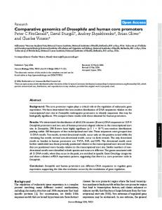 Comparative genomics of Drosophila and human ... - BioMedSearch