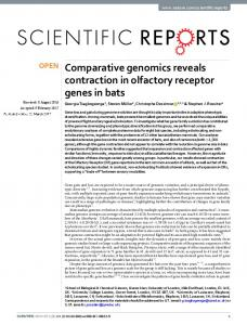Comparative genomics reveals contraction in olfactory ... - Nature