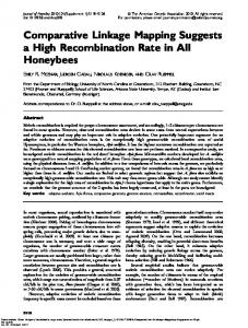 Comparative Linkage Mapping Suggests a High Recombination ...