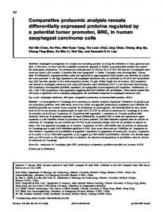 Comparative proteomic analysis reveals differentially expressed ...