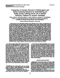 Comparison of Acetate Turnover in Methanogenic and Sulfate