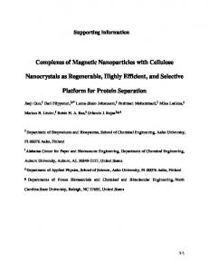 Complexes of Magnetic Nanoparticles with Cellulose ...