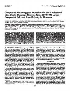 Compound Heterozygous Mutations in the Cholesterol Side-Chain ...