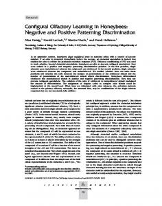 Configural Olfactory Learning in Honeybees