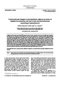 Conformational changes in photosynthetic pigment proteins on ...