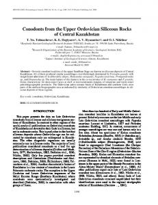 Conodonts from the Upper Ordovician Siliceous Rocks ... - Springer Link