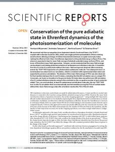 Conservation of the pure adiabatic state in