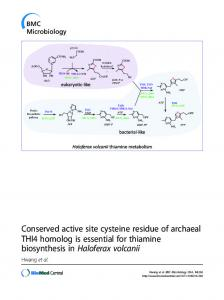 Conserved active site cysteine residue of archaeal THI4 homolog is ...