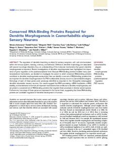 Conserved RNA-Binding Proteins Required for