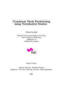Consistent Mesh Partitioning using Tetrahedral Meshes - Studierstube