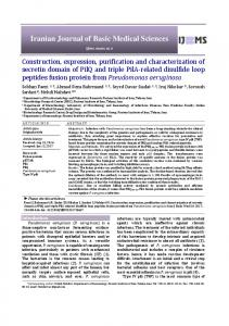 Construction, expression, purification and characterization of secretin ...