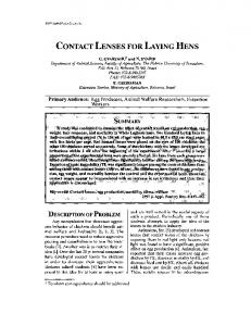 contact lenses for laying hens