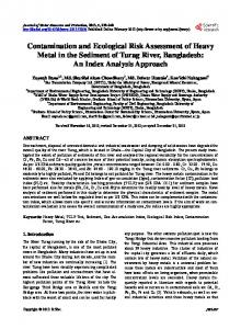 Contamination and Ecological Risk Assessment of Heavy Metal in the