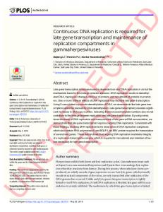 Continuous DNA replication is required for late gene ... - PLOS