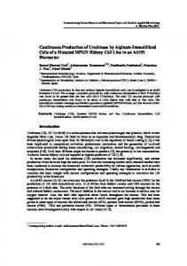 Continuous Production of Urokinase by Alginate-Immobilized Cells of