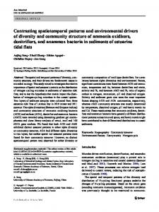 Contrasting spatiotemporal patterns and