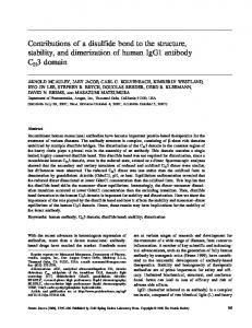 Contributions of a disulfide bond to the structure ... - Wiley Online Library