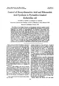 Control of Deoxyribonucleic Acid and Ribonucleic Acid Synthesis in ...