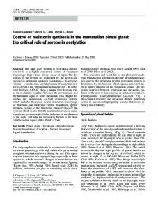 Control of melatonin synthesis in the mammalian pineal gland: the ...