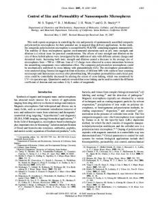 Control of Size and Permeability of Nanocomposite ... - ACS Publications